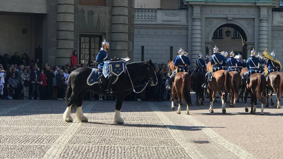 Hästar i vaktparaden på Slottsgården