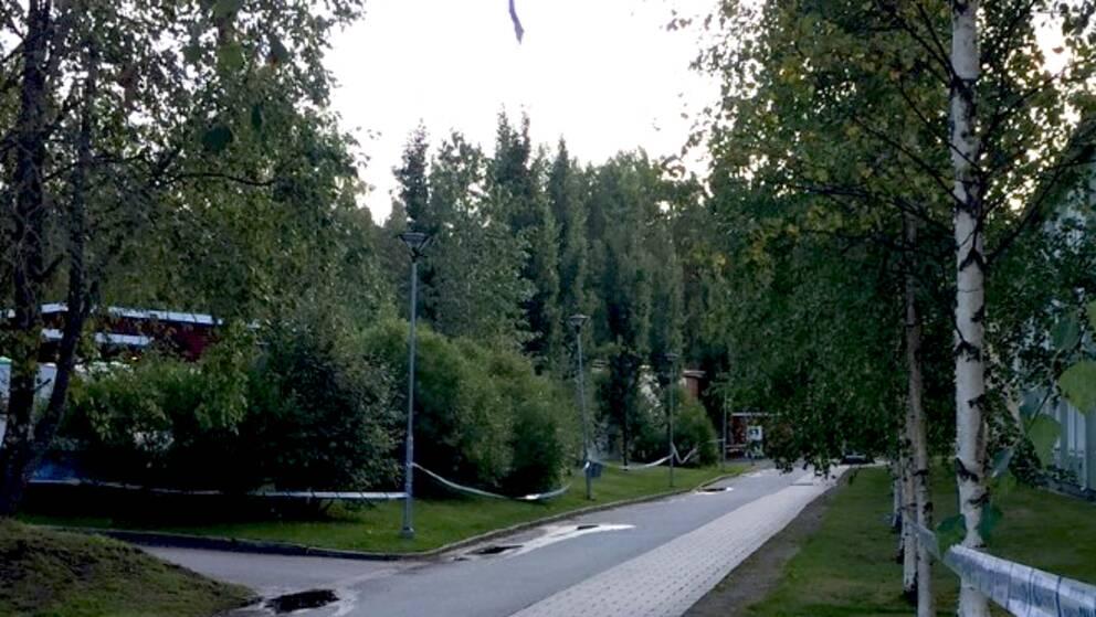 Utredningsarbetet fortsätter efter den misstänkta våldtäkten på Tuna i Luleå.