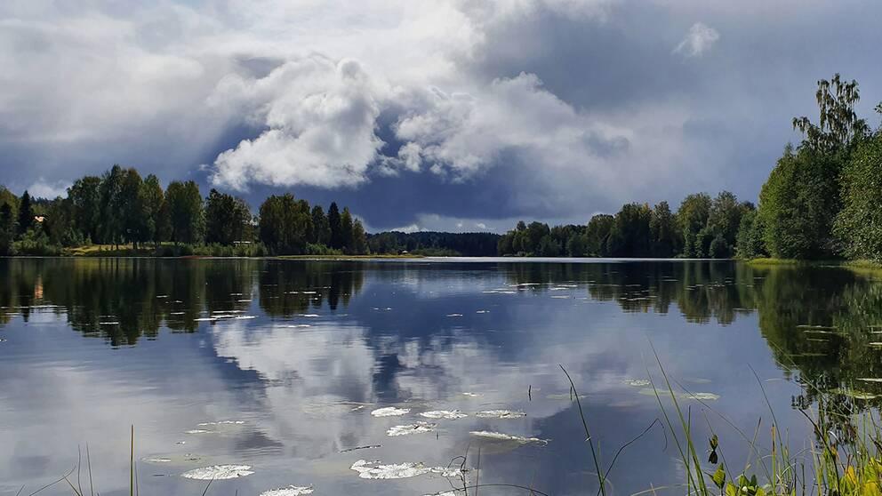Faxälven, Österforse, Ångermanland. Tisdag 17 sept kl 13.