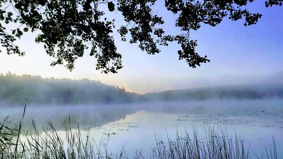 En kylig men fin morgon vid Rönningesjön i Täby.