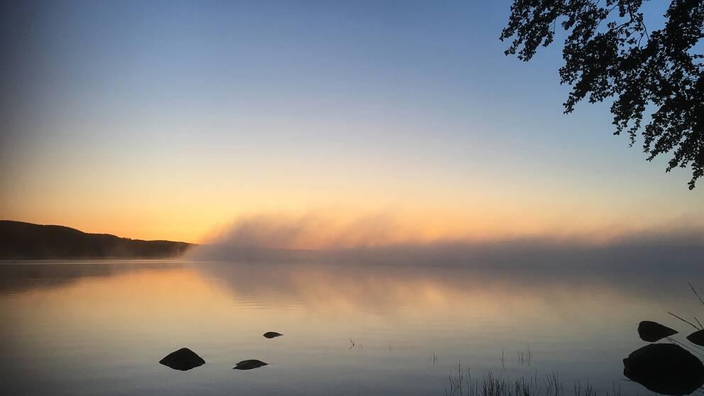 Klar himmel, 5.4 grader varmt. Äspenäs vid Västersjön/Ängelholm.