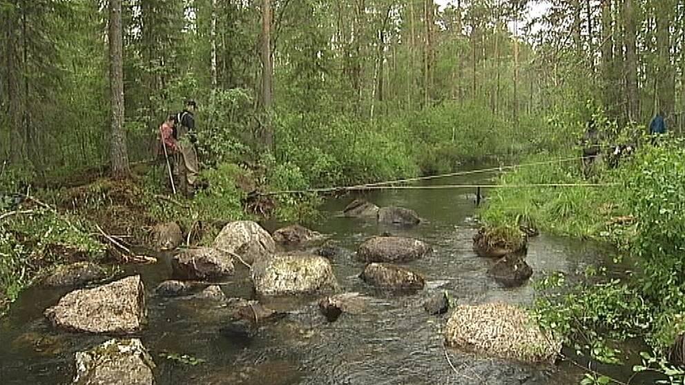Stenar tas bort i ett vattendrag i Jämtland