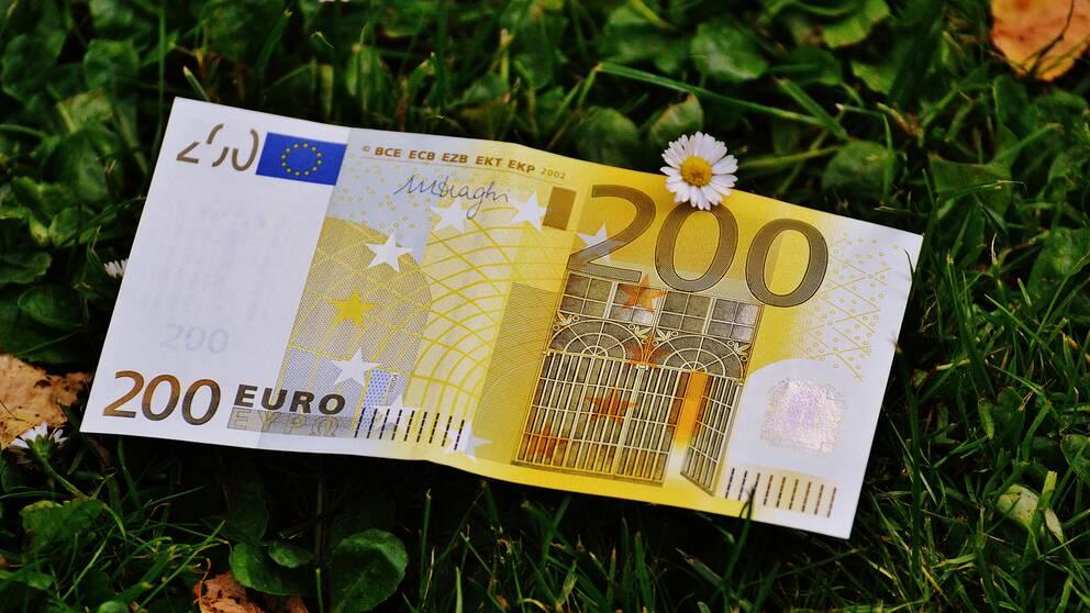 En eurosedel på en grön gräsmatta.