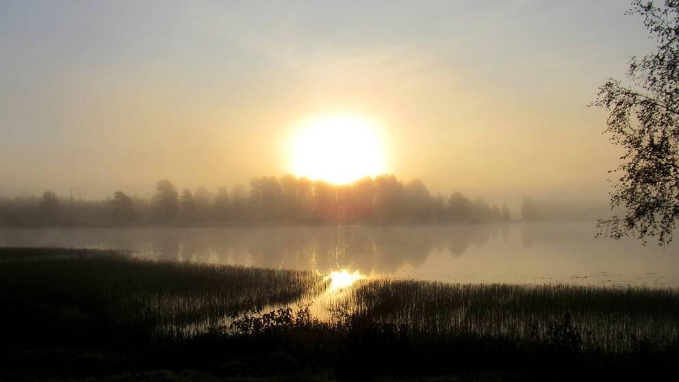 Både dimma och sol i morse Bullsjön Malung Västerdalarna.