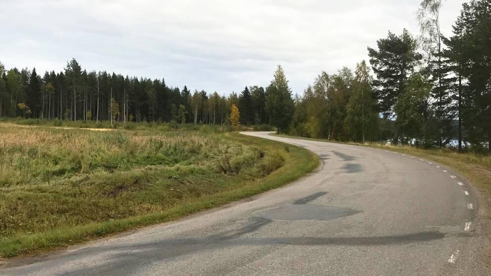 Kurvig väg i Hälsingland.