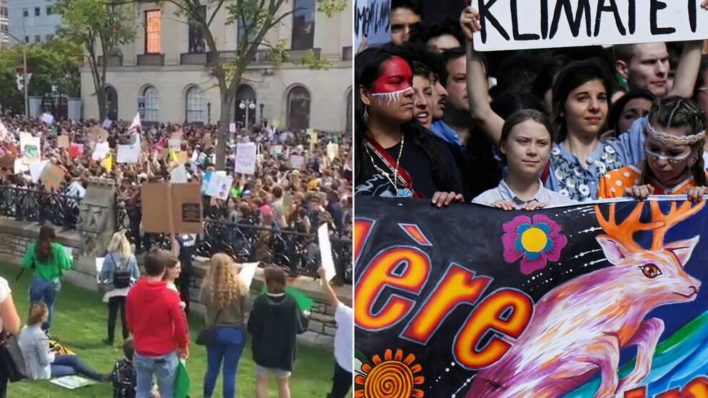 Greta Thunberg demonstrerar i Montreal under fredagen