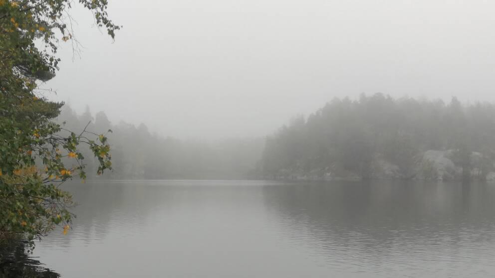 Söndags morgonväder från Söderbysjön Stockholm kl 8.00.