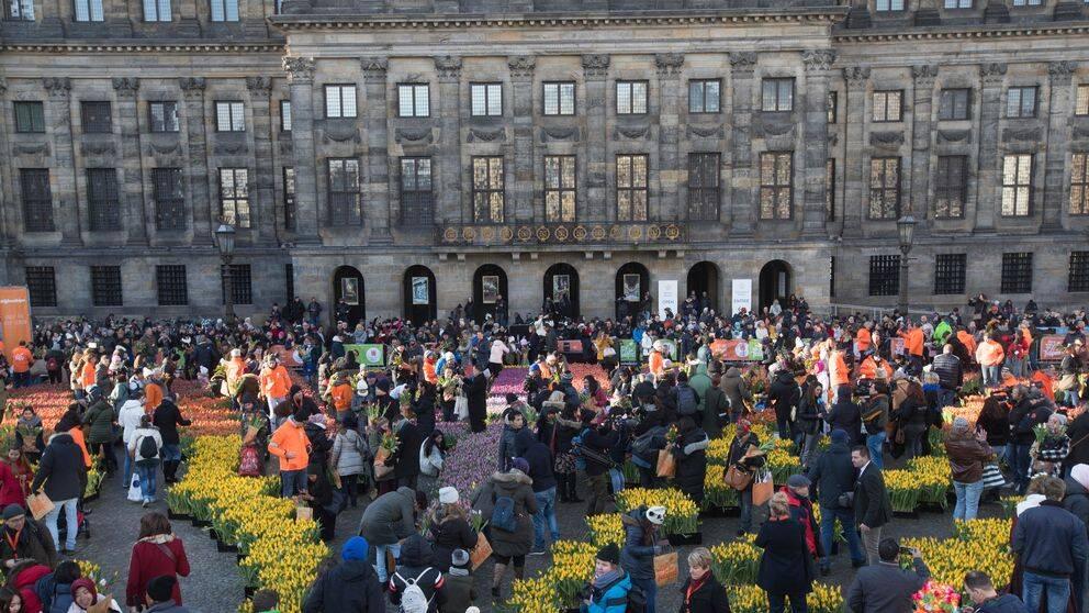 Människor på Tulpandagen i Amsterdam