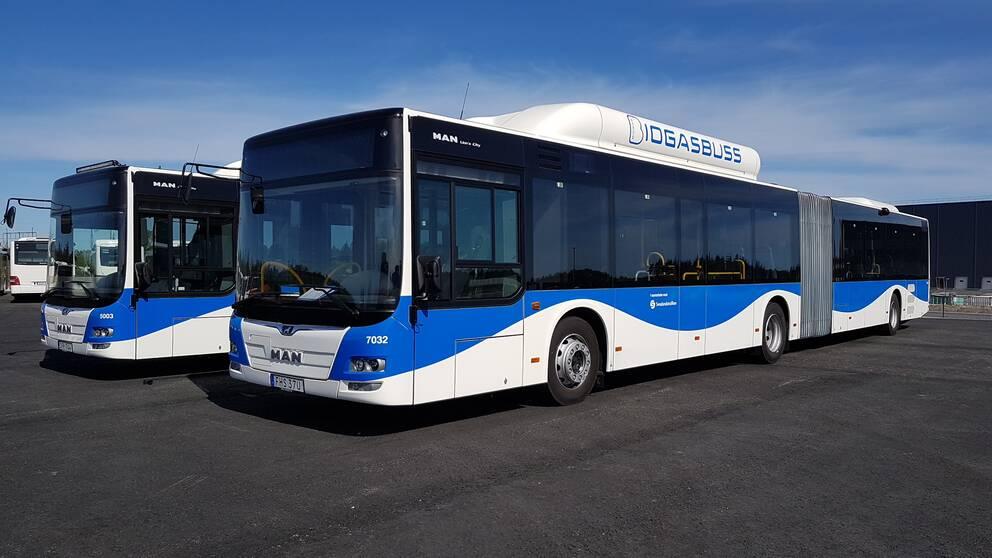 De nya blåvita länsbussarna