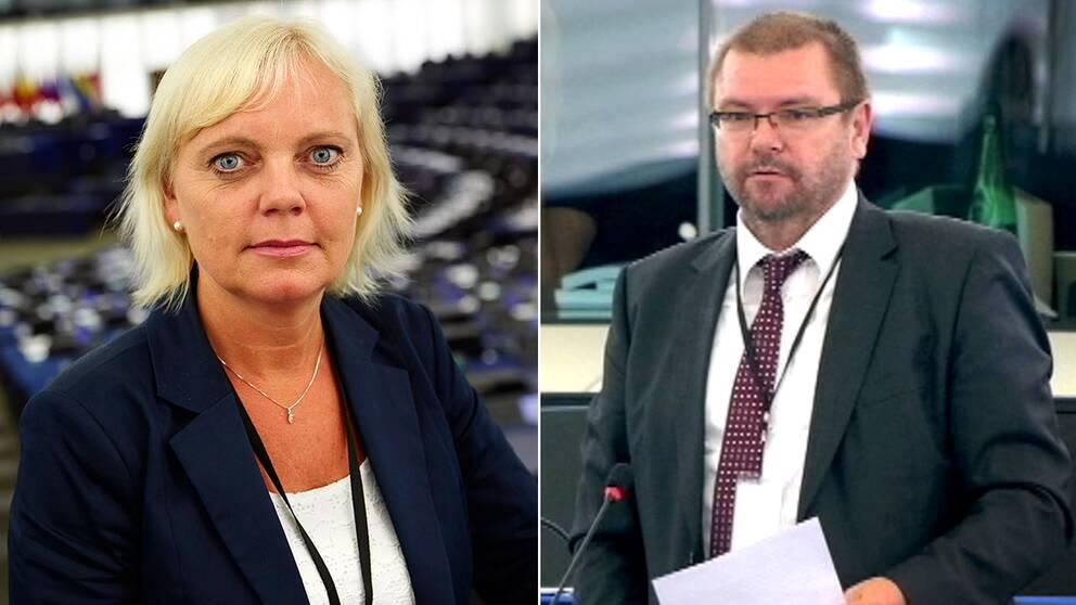 Robert Iwaszkiewicz är Sverigedemokraternas och Kristina Winbergs nya partner i EU-parlamentet.