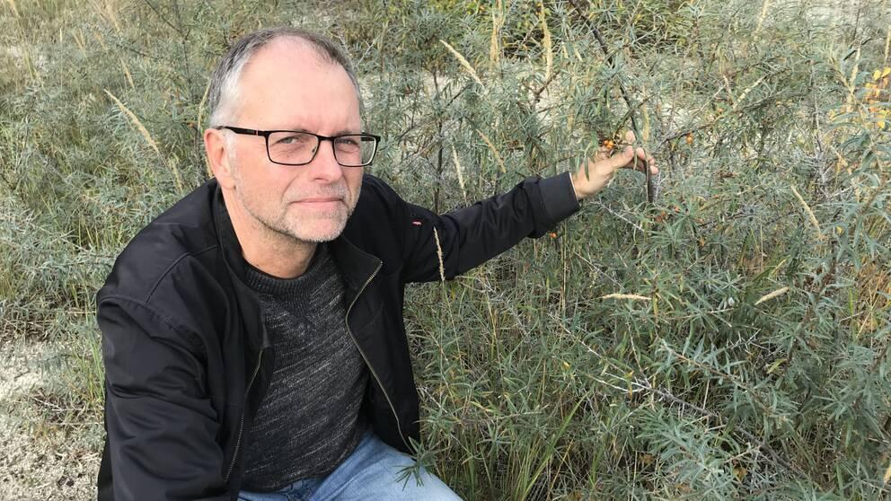 Mats Wirén, ekolog Malmö Stad.