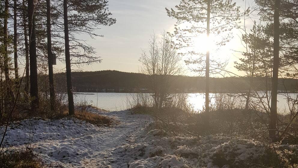 Fin morgon i Åsele, Västerbotten. 31 oktober.