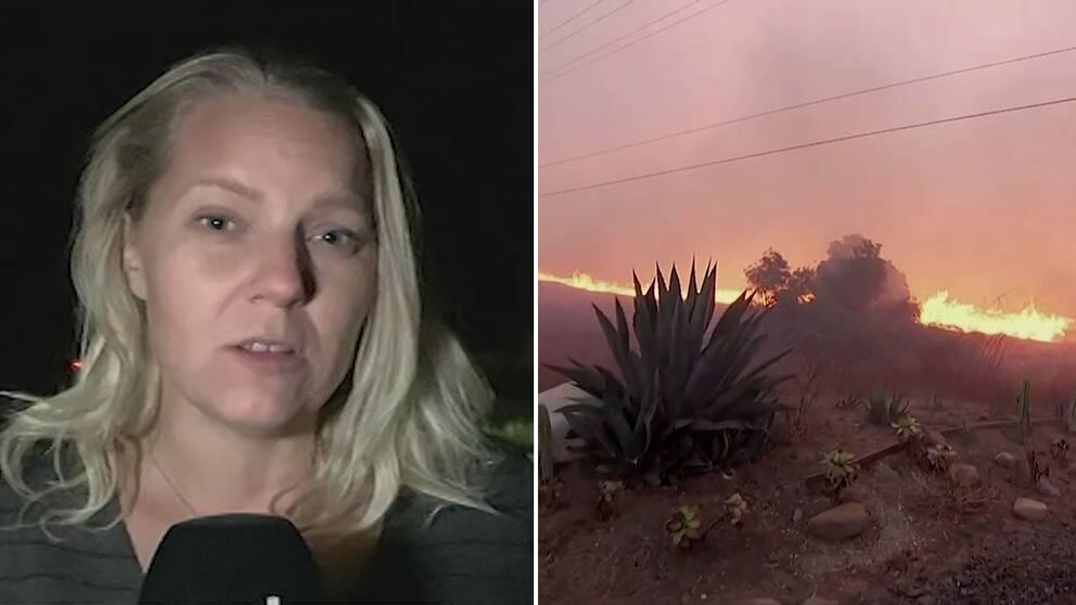 Carina Bergfeldt: Kalifornien har misskött sina skogar under decennier.