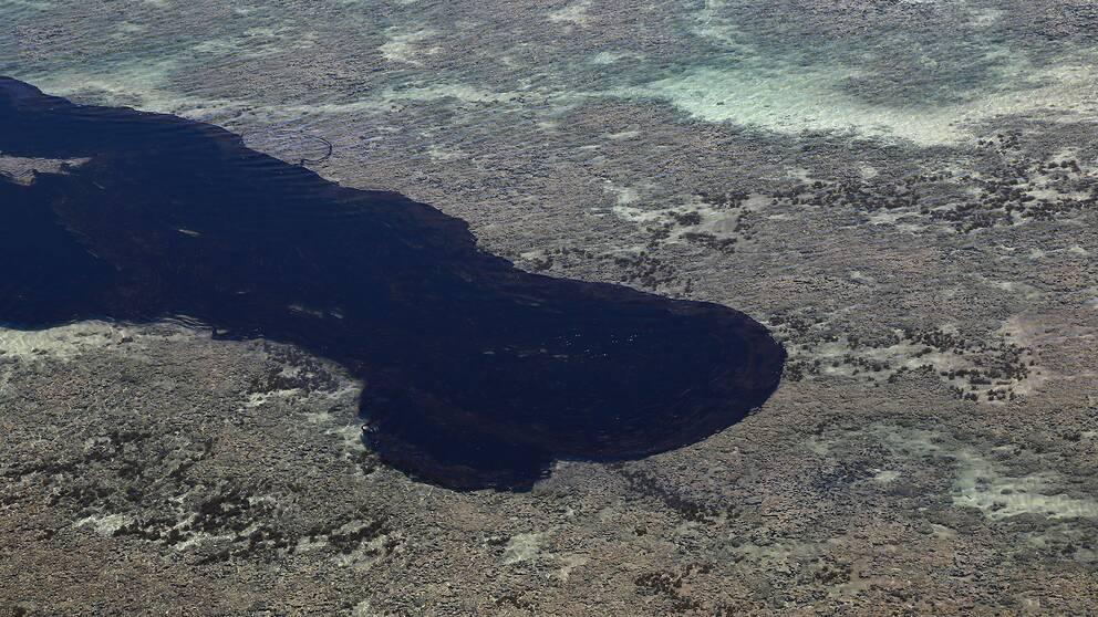 En del av oljeutsläppet som drabbade de brasilianska stränderna