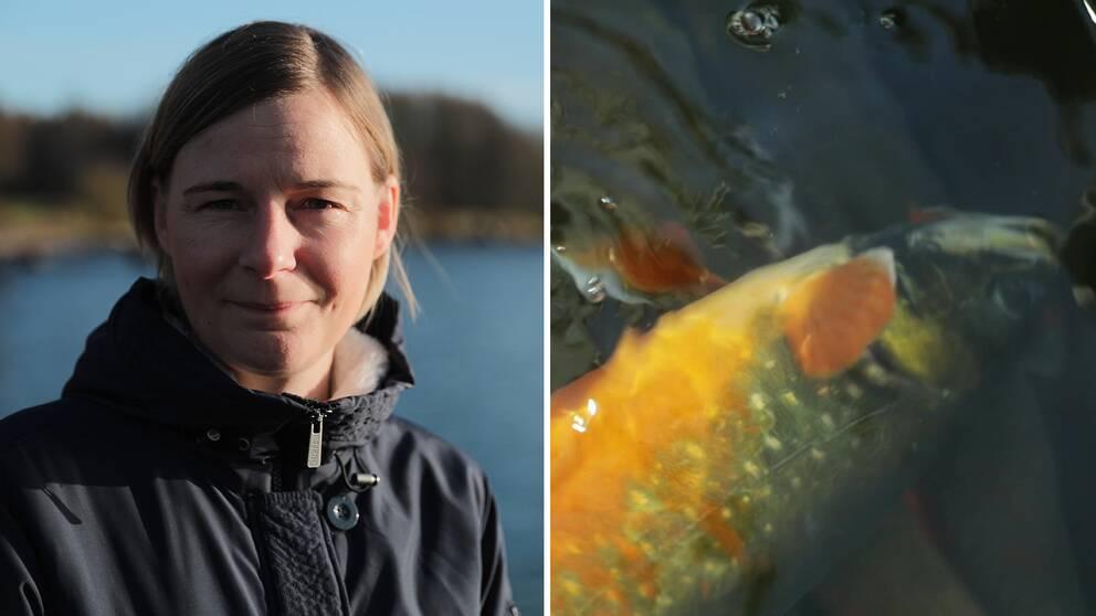 Malin Setzer, fiskerikonsulent på Länsstyrelsen Jönköping.