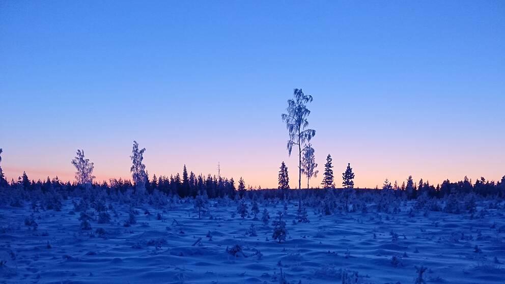 – 26 i Kihlangi Norrbotten.