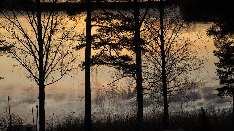 Soluppgång över Virsbosjön vid vackra Virsbo Västmanland torsdag klockan 8.41. En lätt isläggning kunde skönjas. Temperaturen var -3,3 grader så det är väl vad vi har att vänta oss nu.