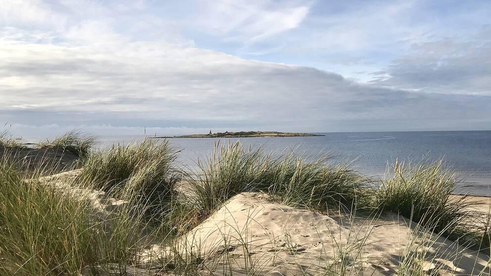 November i Tylösand Halland... Ingen snö men desto mer sol och sand :)