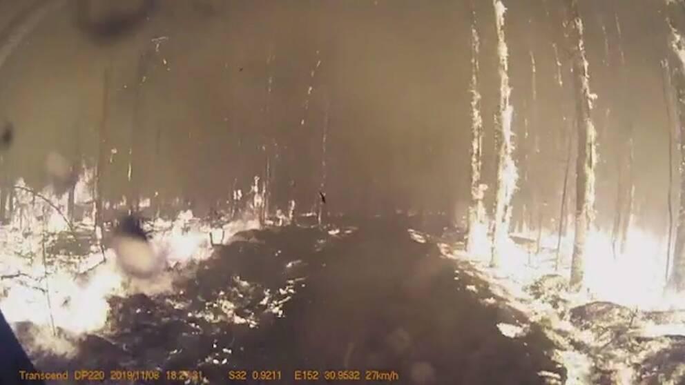 Se hur brandmännen kör igenom infernot i New South Wales.