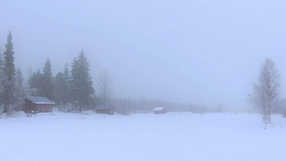 Fredag förmiddag kl 10. Mulet och 0-gradigt i Junosuando Norrbotten.