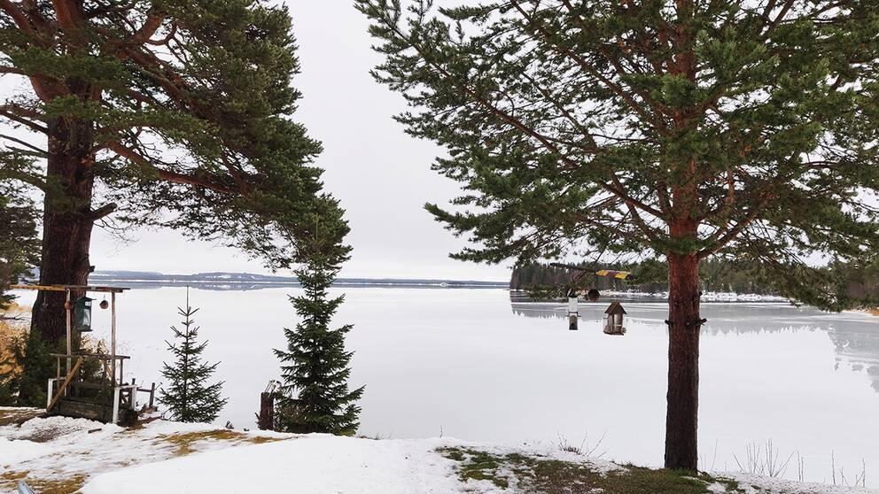 Månstaviken Jämtland den 22 november.