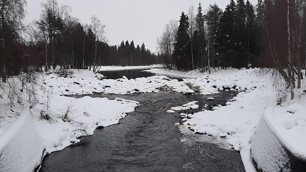 Teurajärvi i Tornedalen den 22 november.