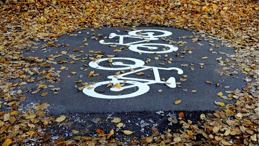 Bild på cykelväg täckt med höstlöv