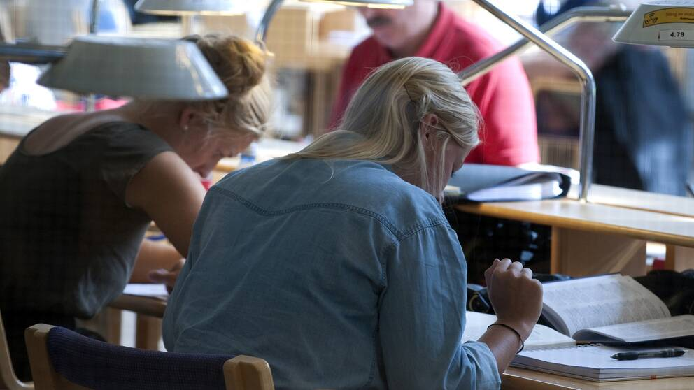 Studenter studerar i biblioteket på Stockholms universitet