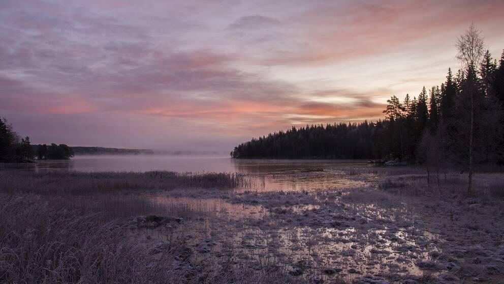 Gyllene morgon Prästviken Järnsjön Årjäng Värmland 1 dec.
