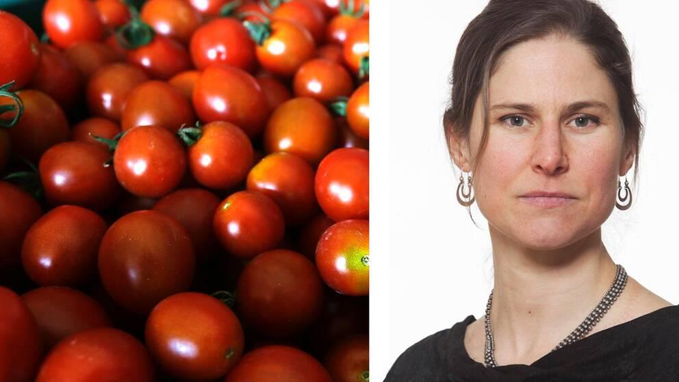 Naturskyddsföreningens ordförande Johanna Sandahl.