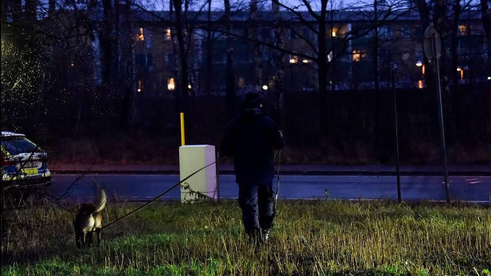 Polis och hund i en skogsglänta bredvid vägen som söker i mörkret.
