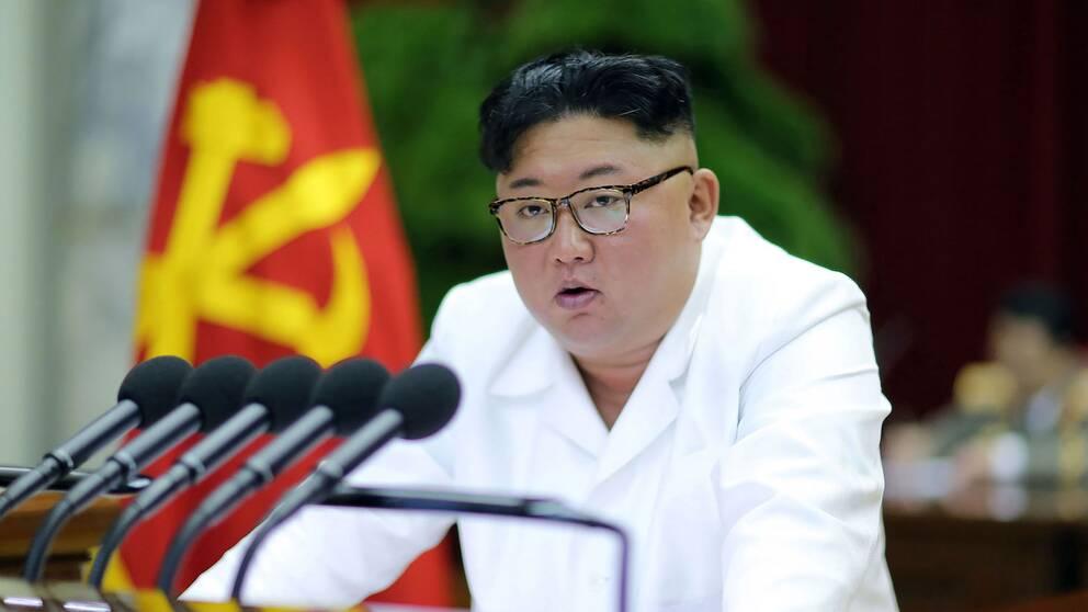 Nordkoreas diktator Kim Jong Un talar på centralkommittens partimöte i Pyongyang den 29 december 2019.