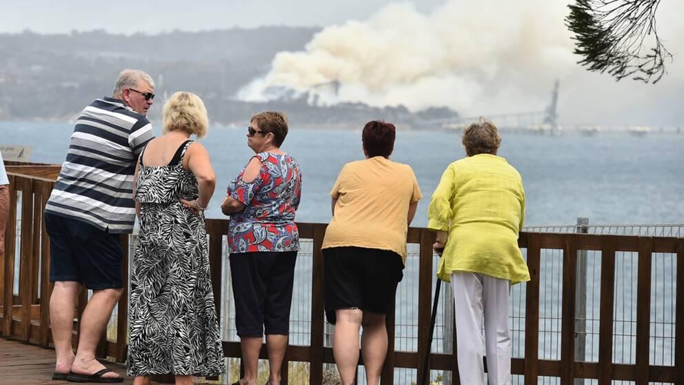 Vid staden Eden i delstaten New South Wales pågår en brand i en flisfabrik.