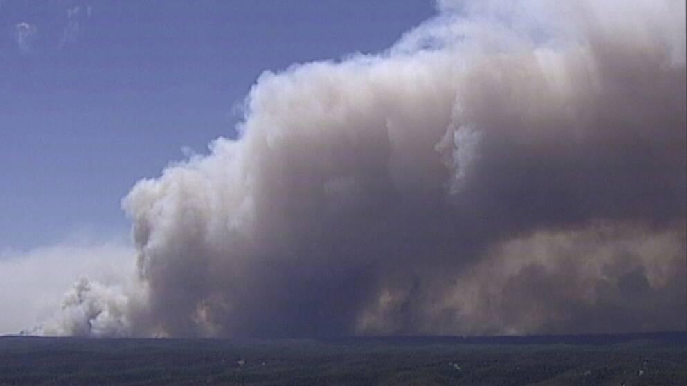 Branden, som tillsammans med närliggande bränder, haft en yta stor på 800000 hektar, ska nu vara under kontroll.