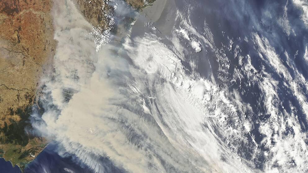 Röken från de omfattande bränderna i Australien har inte bara påverkat Nya Zeeland – utan även bland annat Chile i Sydamerika. Sakta men säkert åker brandröken jorden runt.