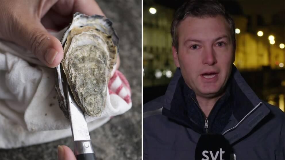 En hand som öppnar ett ostron och en bild på SVT:s Europakorrespondent Christoffer Wendick.