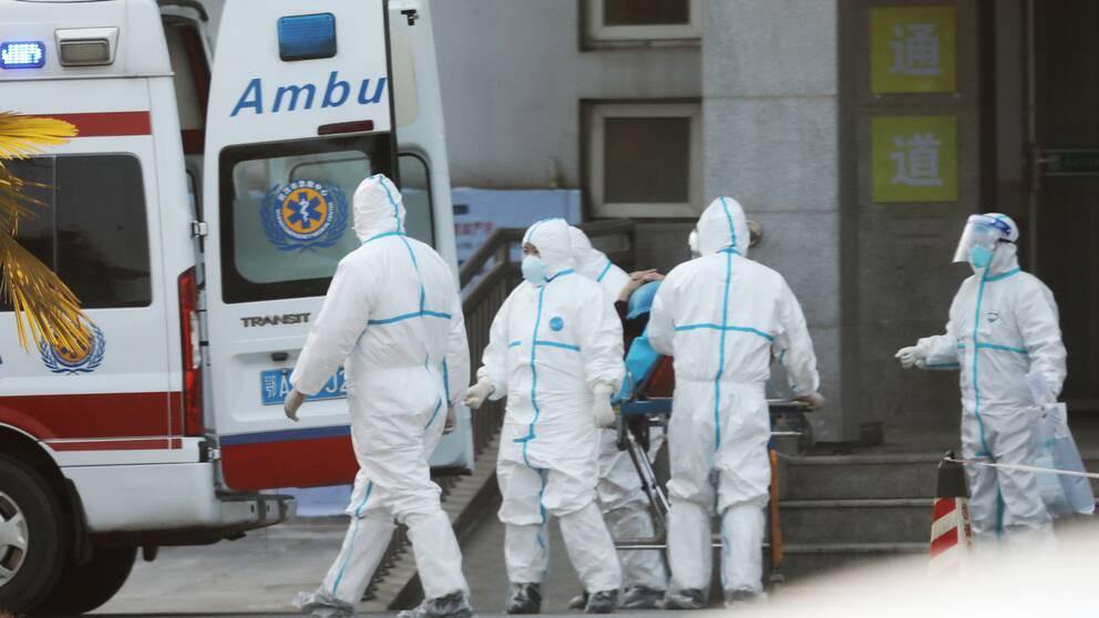 """""""Hur många som kommer att dö av det här vet vi inte"""", säger Björn Olsen, professor vid Uppsala Universitet. På bilden vårdpersonal i Wuhan där viruset började spridas vid årsskiftet."""
