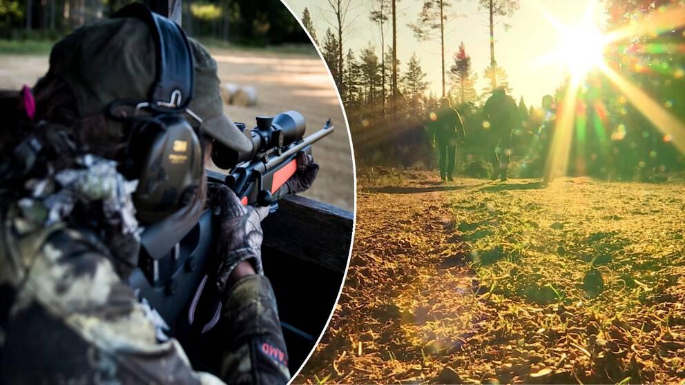 SVT Avslöjar: Företagstoppar och politiker har fått jaga gratis i 30 år i Åmål