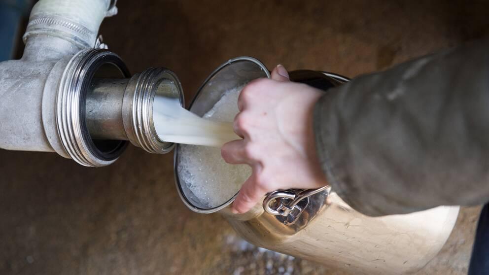 Arla stoppar mjölken