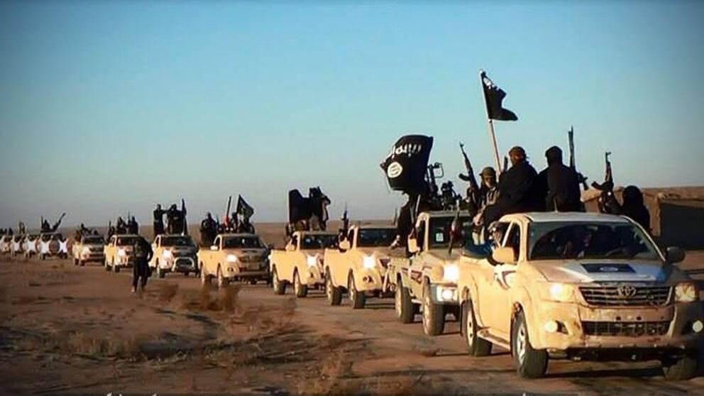 Konvoj med IS-stridande.