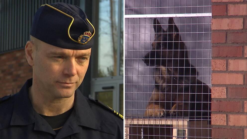 Polisman. Hund bakom galler