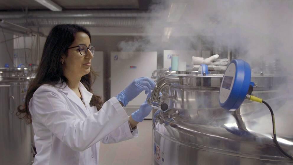 En forskare stänger en stor stålbehållare som förvarar DNA från den estländska befolkningen.