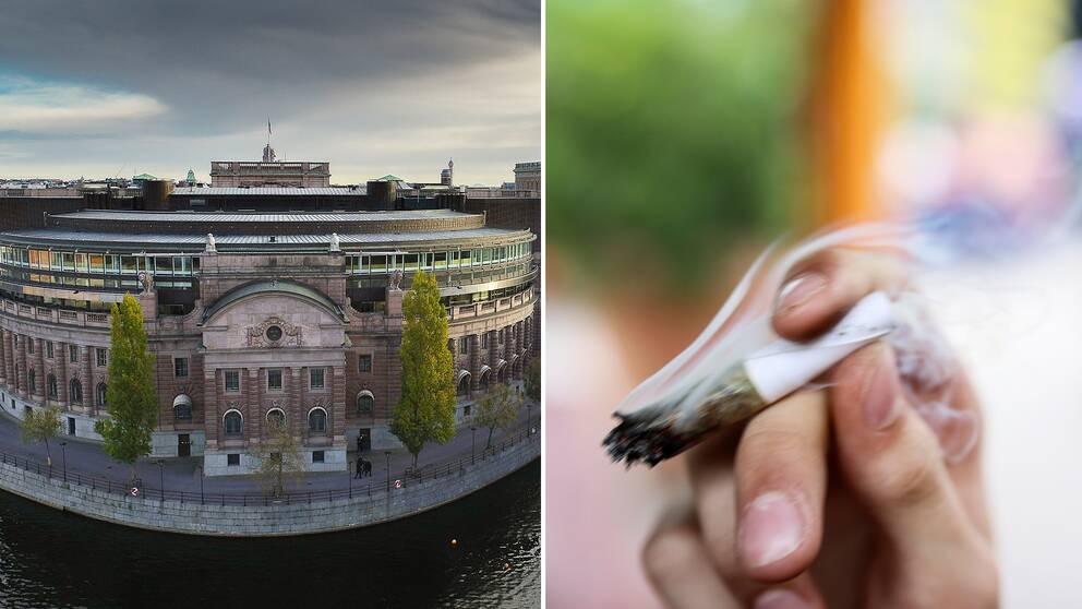 Riksdagen har kommit överens om att se över narkotikalagstiftningen.