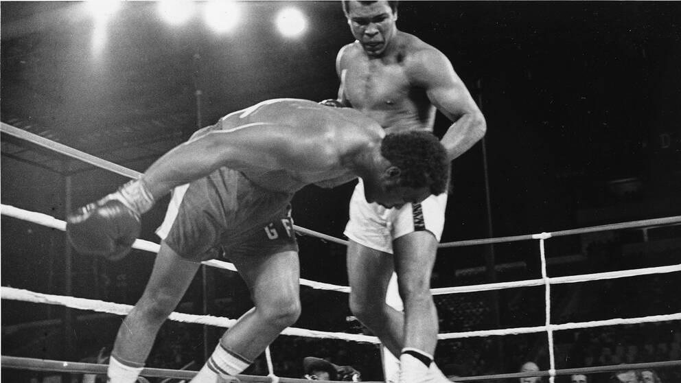 """Muhammad Ali ser på när George Foreman går i golvet under klassiska """"Rumble in the Jungle"""" 1974."""