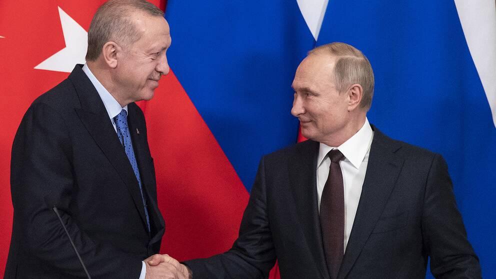Rysslands president Vladimir Putin och Turkiets president Tayyip Erdogan skakar hand