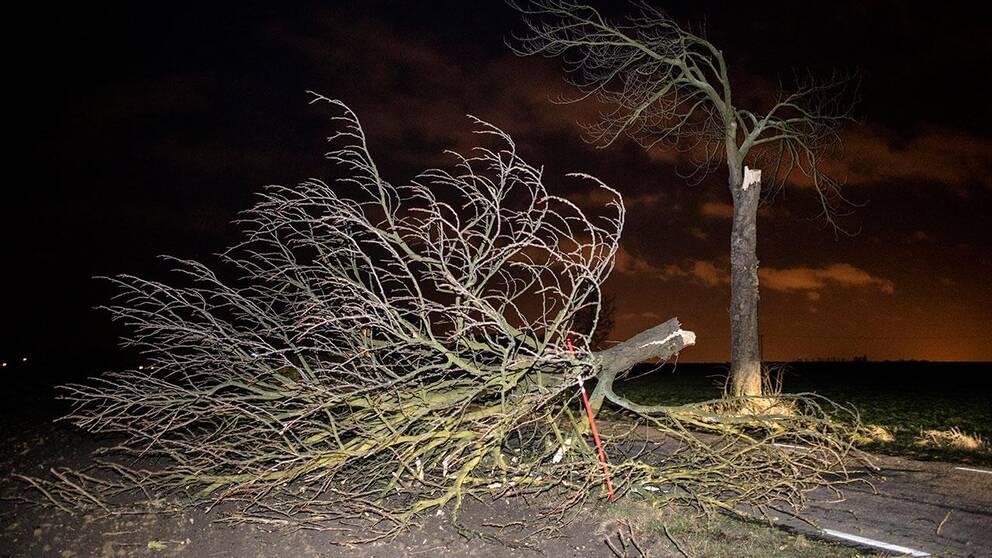 Stormen Egon skapade oreda även under söndagen.
