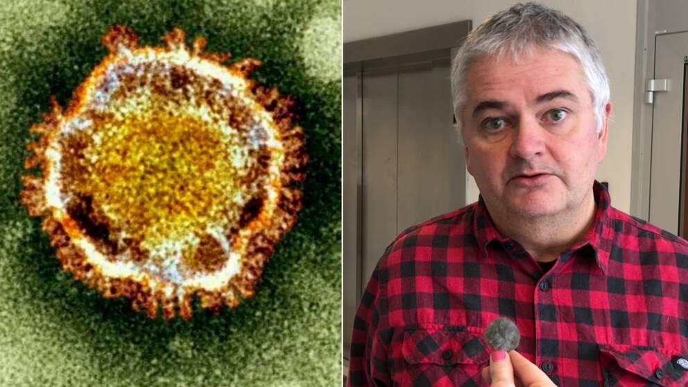 Coronavirus i mikroskop till vänster, smittskyddsläkare Anders Nystedt till höger.