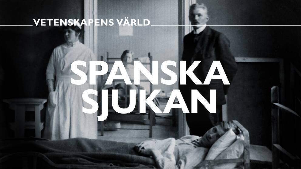Spanska sjukan – vetenskapens värld.