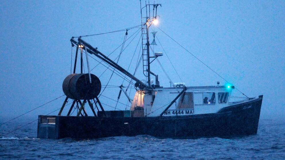 Svenska fiskare landade 1165 ton räkor under 2014.