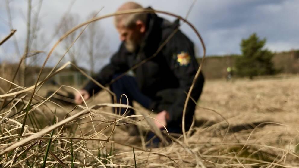Torrt fjolårsgräs gör att gräsbrandrisken nu är hög i Västmanland